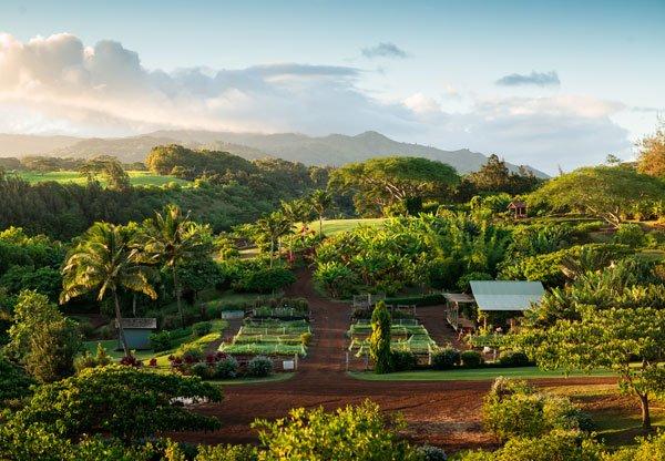 The Farm at Kukuiula