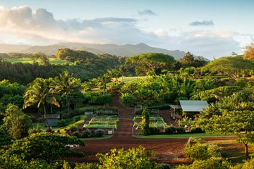 The Farm at Kukuiula at sunset