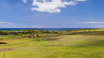 Landscape View of Kahalawai Homesite #41