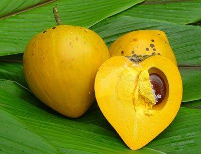 kukui'ula kauai egg fruit