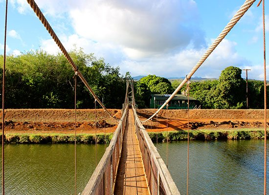 hanapepe swinging bridge kukuiula