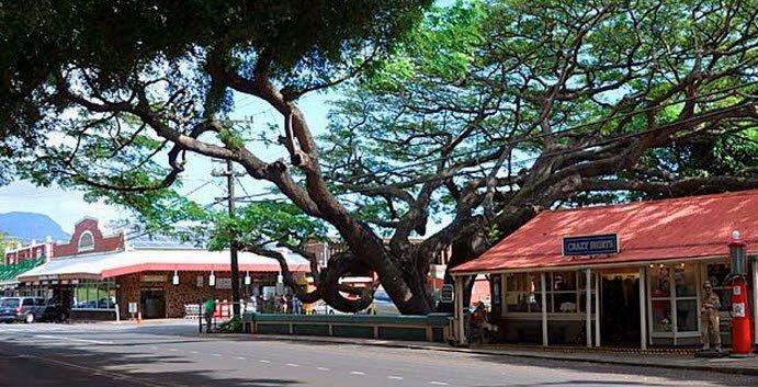 Old Koloa Town Kauai