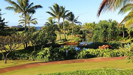 Kauai Real Estate Lot 31