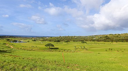 View of land for Kahalawai Homesite #24